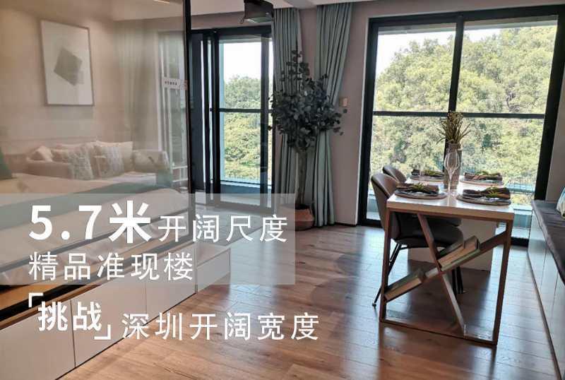 湖景楼王平湖金融中心【硅谷湖城】,首付5成49万起,大型花园小区