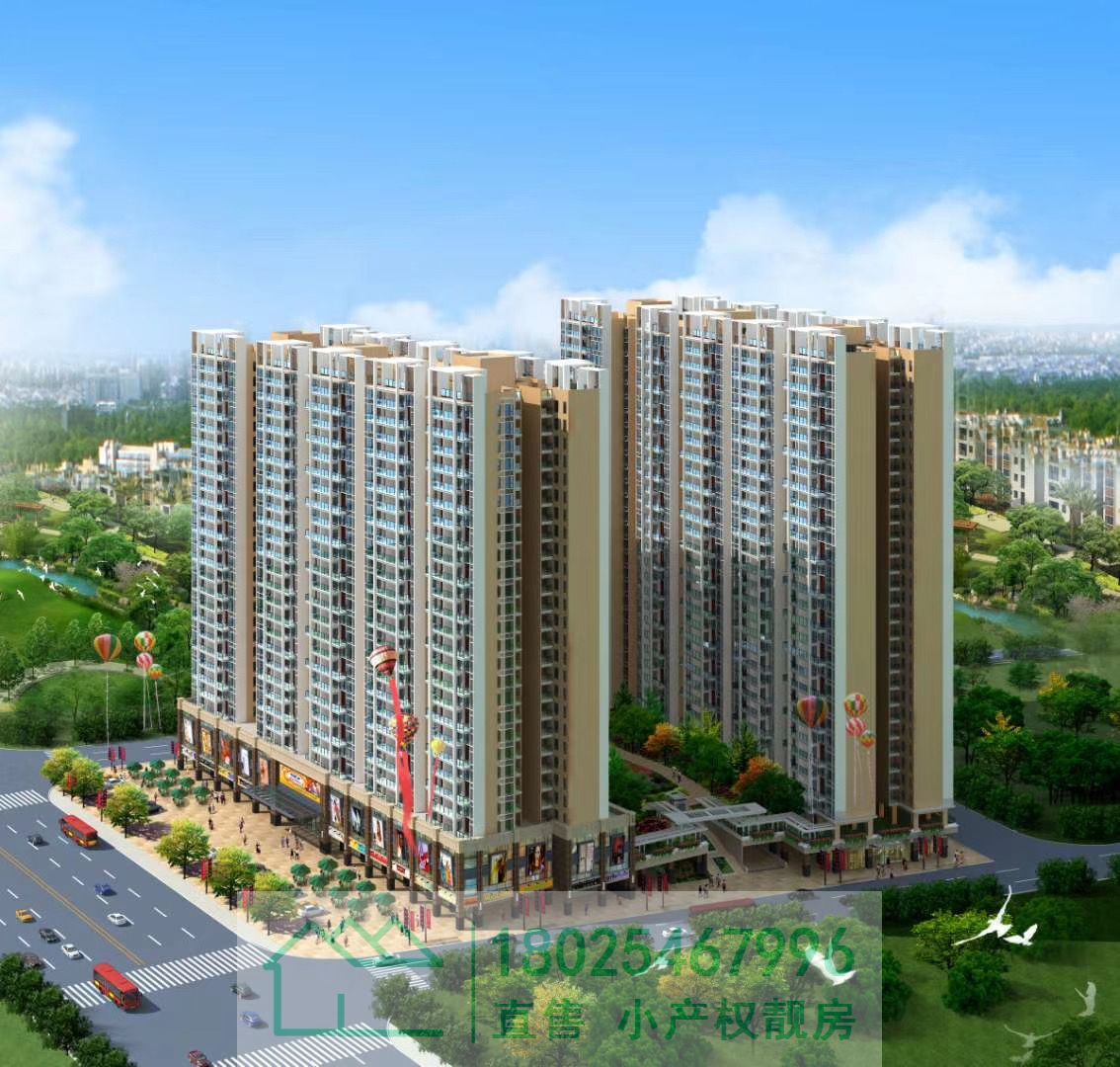 深圳海岸城村委统建楼,沙井中心国际6栋花园小区