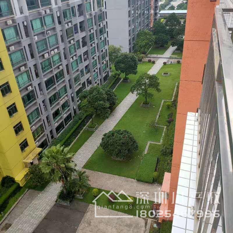 厚街四栋花园洋房,滨海国际首付18万元起首付3成,分期8年利息3.2厘