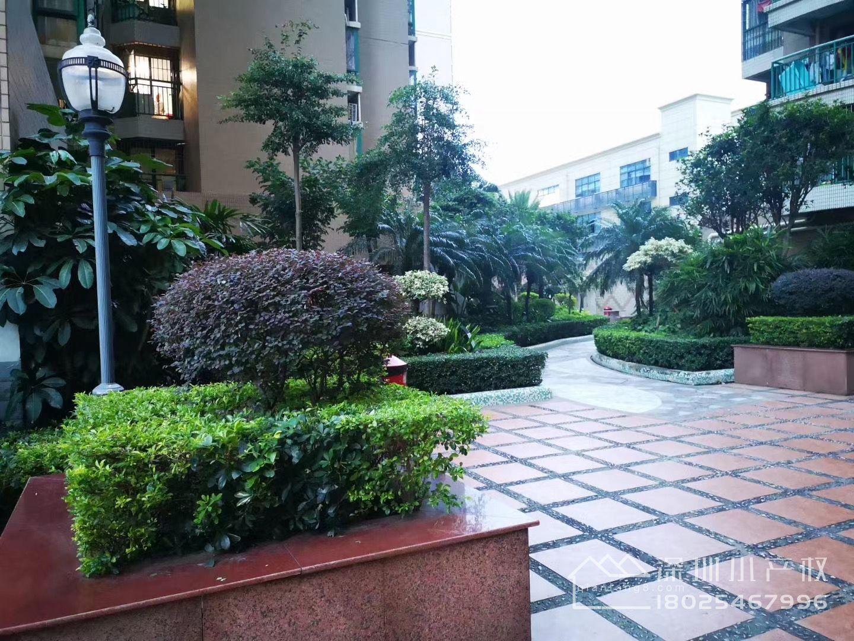 宝安福永7栋花园小区房《福海湾花园》零距离12号线地铁口,临近深圳国际会展中心