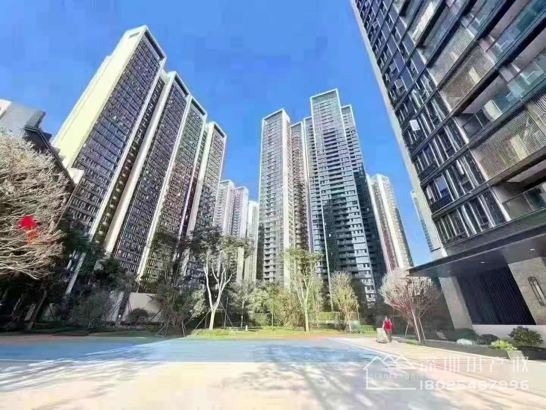 宝安沙井28栋花园房【智汇星辰】两房总价125万起,海岸城零距离