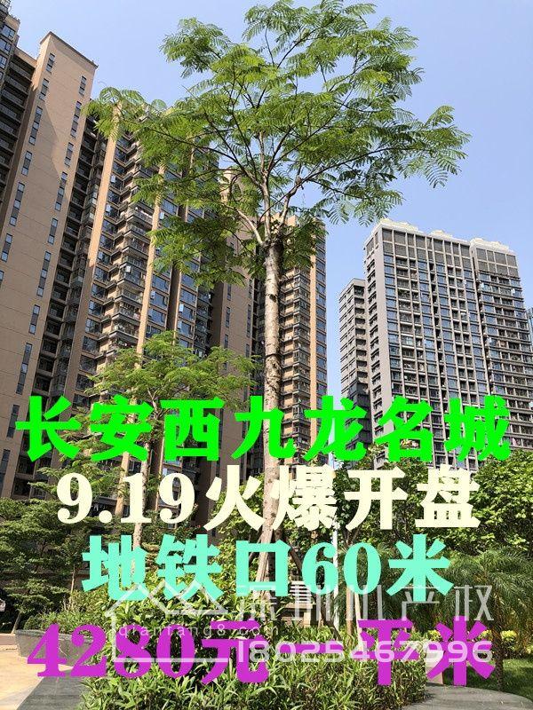 长安轻轨口9栋花园房【西站一品】,均价5280/㎡起